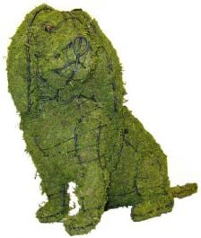 Topiary Dog Cavalier sitting With Moss Filling
