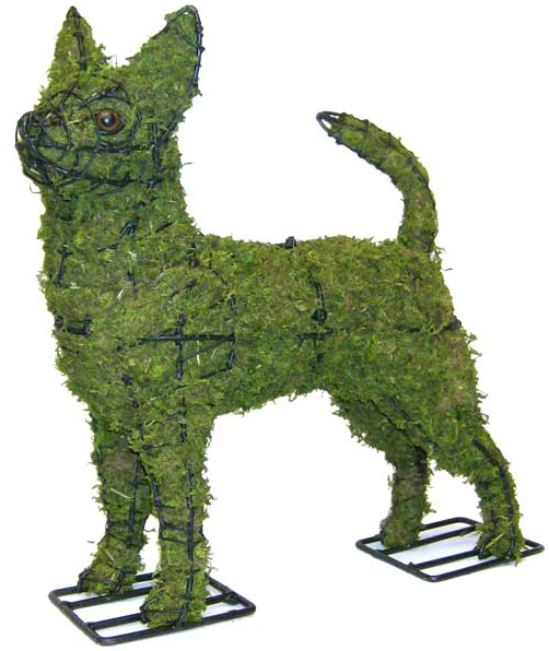 Topiary Dog Chihuahua With Moss Filling