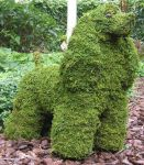 Topiary Dog Cocker Spaniel With Moss Filling