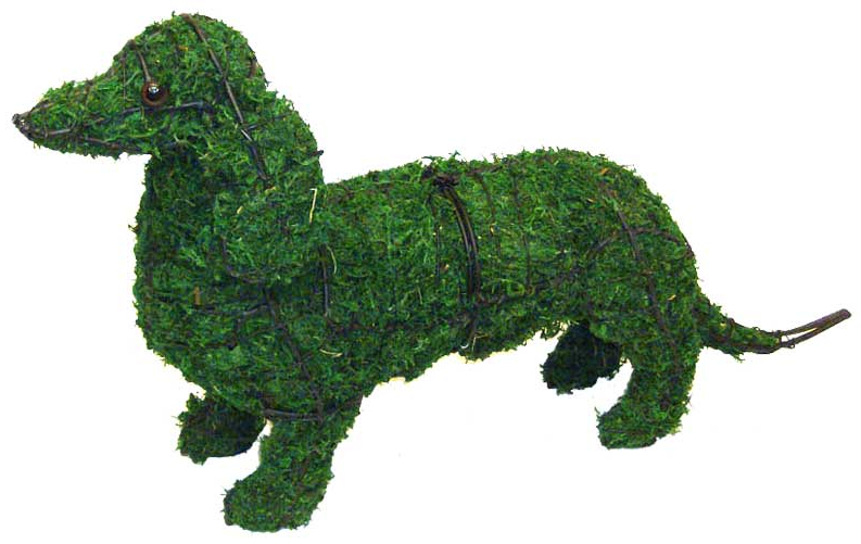 Topiary Dog Dachshund With Moss Filling