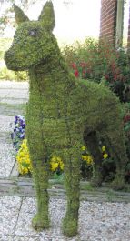Topiary Dog Doberman With Moss Filling