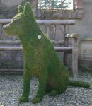 Topiary Dog German Shephard sitting With Moss Filling