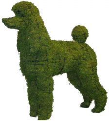 Topiary Dog Poodle With Moss Filling