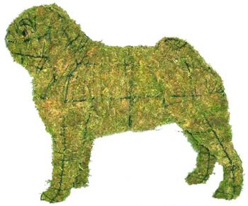 Topiary Dog Pug With Moss Filling