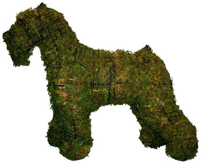 Topiary Dog Schnauzer With Moss Filling