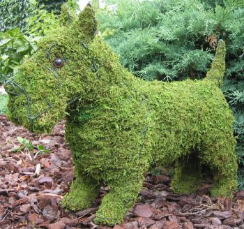 Topiary Dog Scottie With Moss Filling