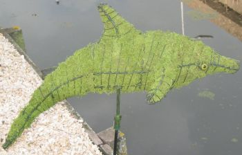 Topiary Dolphin With Moss Filling