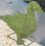 Topiary Duck With Moss Filling