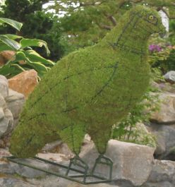 Topiary Eagle purch on tree With Moss Filling