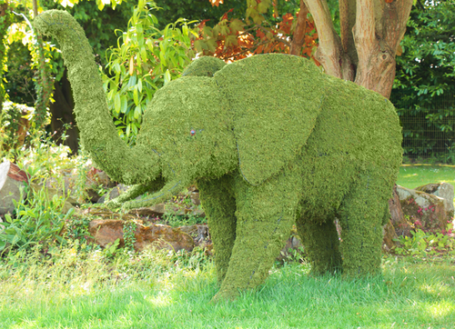 """Nandi the Mother"" Topiary Elephant with Moss Filling - H152cm x L221cm"