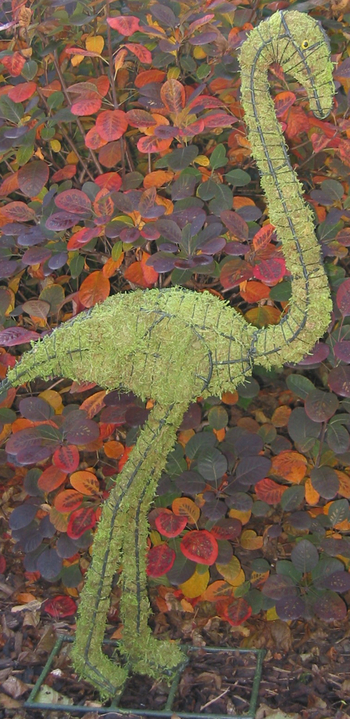 Topiary Flamingo  With Moss Filling