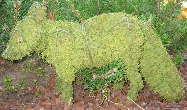 Topiary Fox With Moss Filling