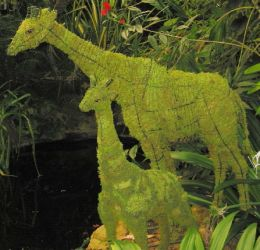 Topiary Giraffe With Moss Filling