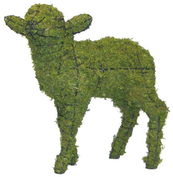 Topiary Lamb head up With Moss Filling