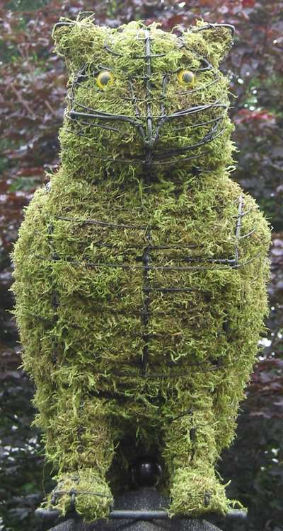 Topiary Owl With Moss Filling
