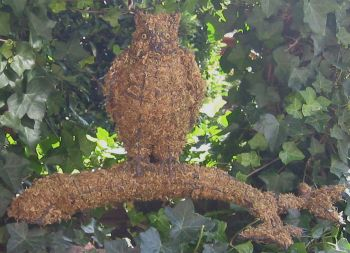 Topiary Owl on tree  With Moss Filling
