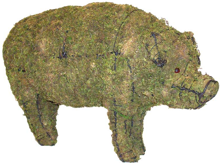 Topiary Pig With Moss Filling