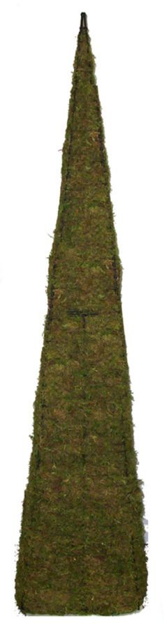 Topiary Pyramid With Moss Filling