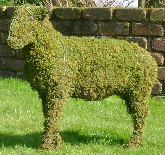 Topiary Sheep With Moss Filling