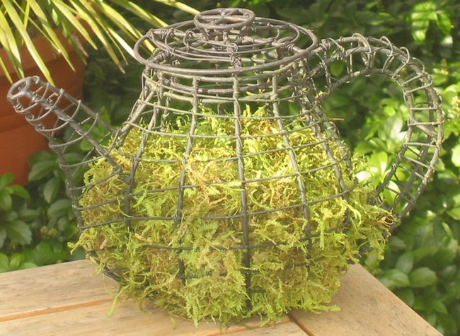 Topiary Teapot With Moss Filling