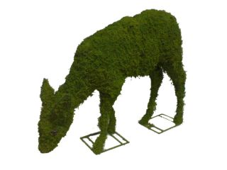 Grazing Deer Topiary Frame