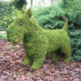 Scottie Dog Topiary Frame