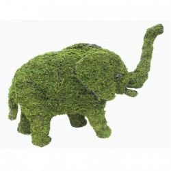 Small Elephant Topiary Frame