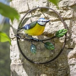25cm x 27cm Perching Blue Tit Wall Art by La Hacienda™