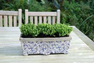 Ceramic Rectangular Planter - 39cm (1ft 2in)