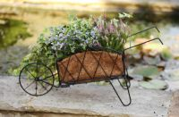 Smart Garden Metal Wheelbarrow Planter