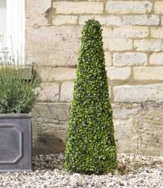 60cm Artificial Topiary Obelisk by Smart Garden