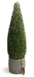150cm Artificial Topiary Tea Grass Cone By Primrose™