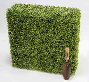 L60cm Topiary Boxwood Hedge By Primrose™
