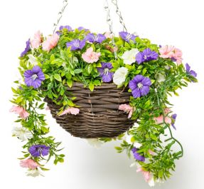 Medium Artificial Petunia Hanging Basket By Primrose™ (25cm) Pink, Purple & White