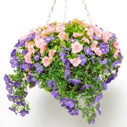 Large Artificial Petunia Hanging Basket By Primrose® (30cm) Purple & Pink