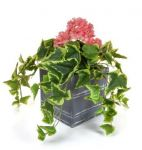 H110cm Large Artificial Planter - Pink & Red Geranium With Cedar