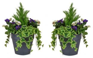 Pair of D60cm Medium Artificial Planter - Purple & White Pansy With Cedar