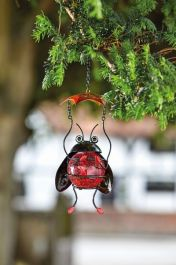 Garden Decoration Bouncy Bug by Smart Garden