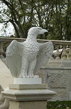 Aquila (Left Hand)