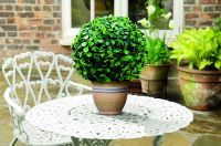 Pair of 15cm Artificial Topiary Boxwood Ball by Gardman