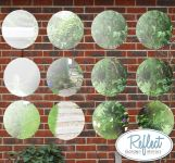 1ft 3in Set of 12 Circular Acrylic Garden Mirrors - by Reflect™