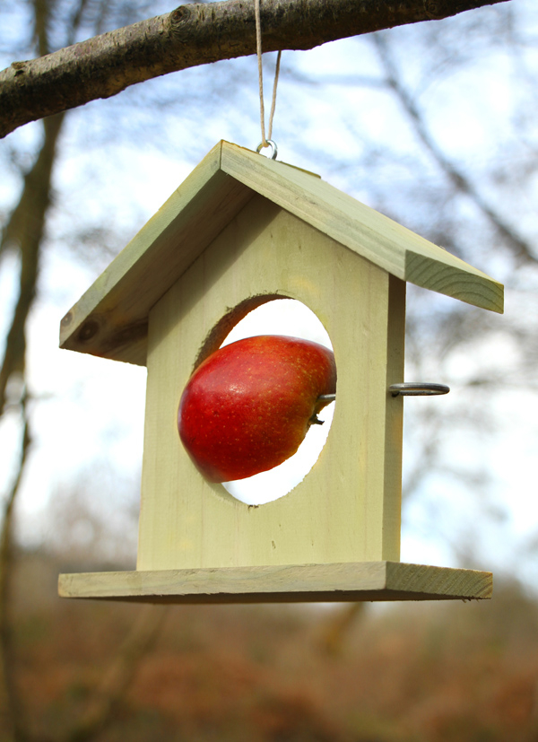 Wooden Bird Feeder in Green