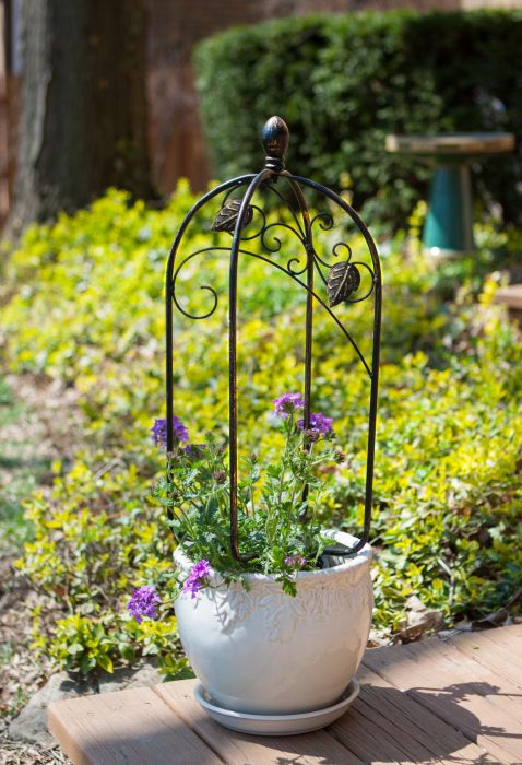 H60cm Scroll & Ivy Pot Trellis Topper in Bronze