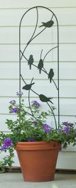 H101cm x W25cm Perching Birds Pot Trellis in Black