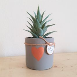 20cm Ceramic Gold Accent Heart Planter With Artificial Plant