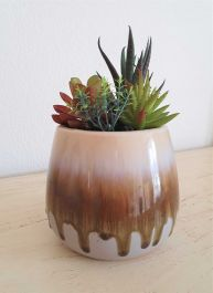 19cm Ceramic Natural  Glaze Planter With Artificial Succulent Plants
