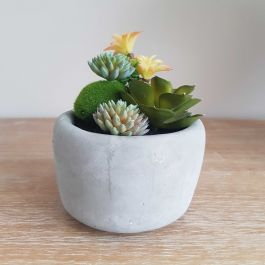 12cm Ceramic Faded Grey Planter With Artificial Succulent Plants
