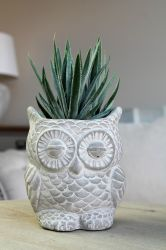 28cm Ceramic Decorative Owl Planter With Artificial Succulent Plant