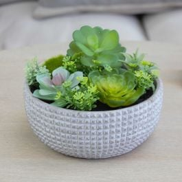 15cm Ceramic  Bowl Planter with Mix of Artificial Succulent Plants