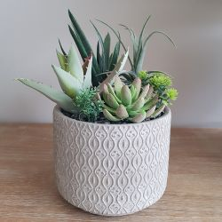 26cm Ceramic  Grey Textured Planter With Artificial Succulent  Plants